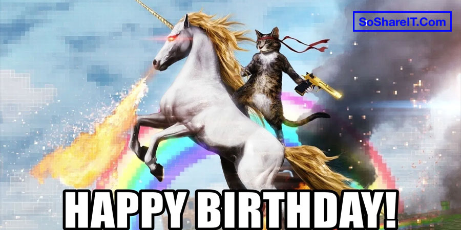 Happy Birthday Cat Meme 9