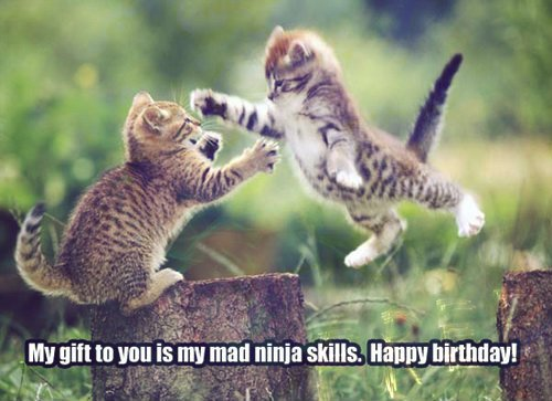 My gift to you is my mad ninja skills. Happy birthday!